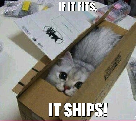 if-it-fits-it-ships